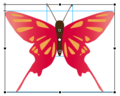 Flash CS5 Butterfly Transformationspunkt.png